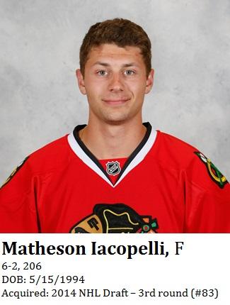 Matheson Iacopelli bio