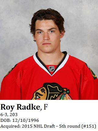 Roy Radke bio