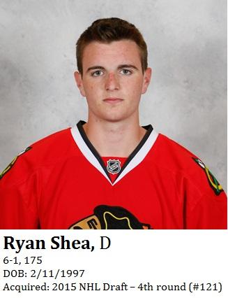 Ryan Shea bio
