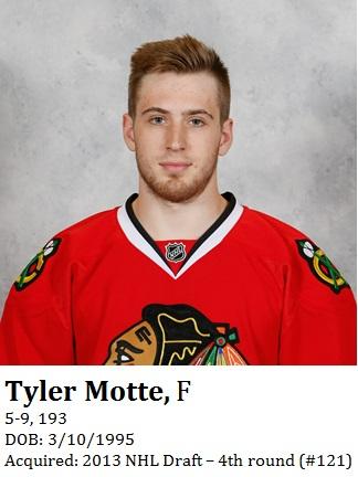 Tyler Motte bio